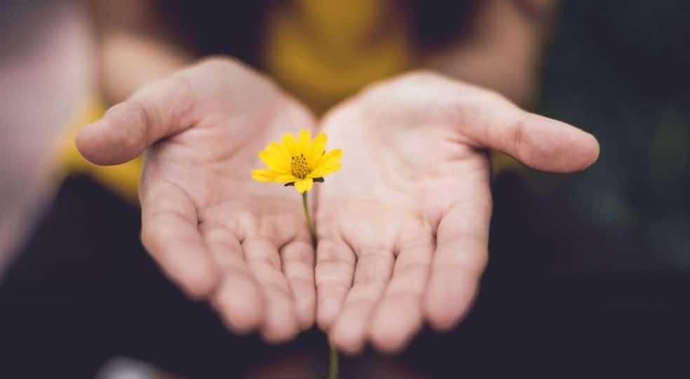 Achtsamkeit – Entdecke den inneren Frieden in dir